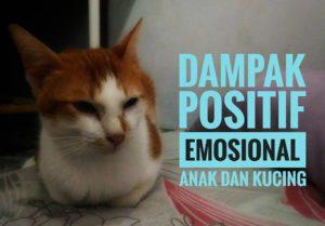 Dampak Positif Emosional Fahmi dan Kucing