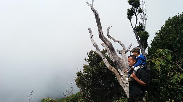 Sesekali kabut menyelimuti pandangan. Tapi dengan begitu kita berasa berada di atas awan :)