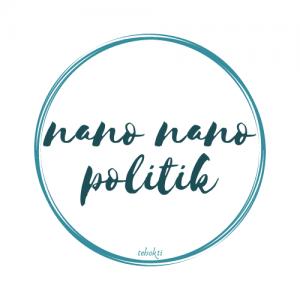 Nano-nano Politik