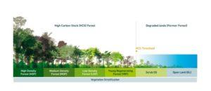 Melindungi Hutan dengan HCS Approach Toolkit