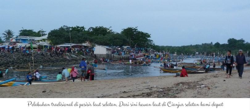 pelabuhan-tradisional-di-pesisir-laut-selatan-dari-sini-hewan-laut-kami-dapat
