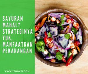 Strategi Harga Sayuran Mahal, Bu? Yuk, Manfaatkan Pekarangan