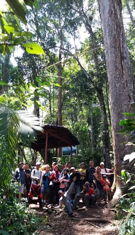 Hutan Indonesia bikin bangga